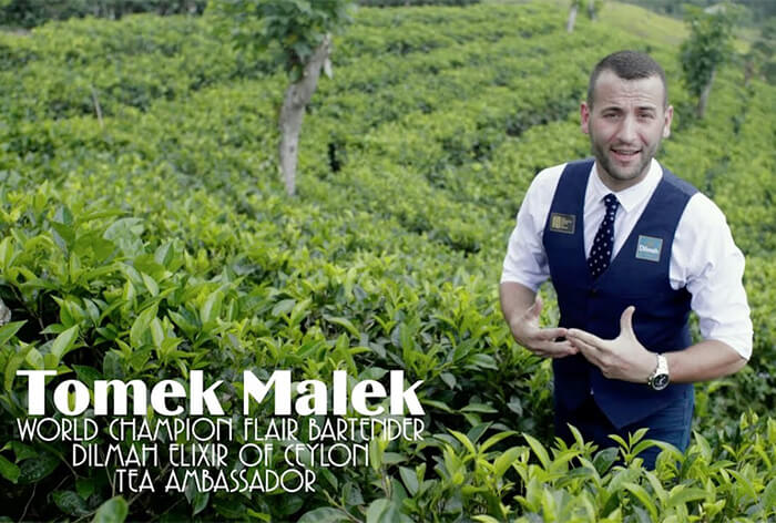 About Dilmah Elixir of Ceylon Tea