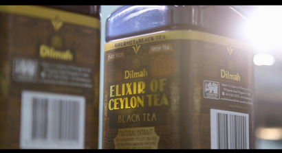 From Fresh Tea Leaves to Elixir